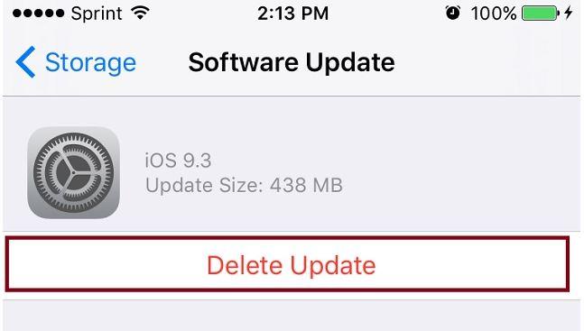 iOS Delete Update