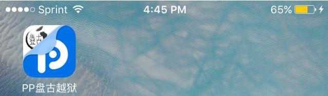 PP iOS app